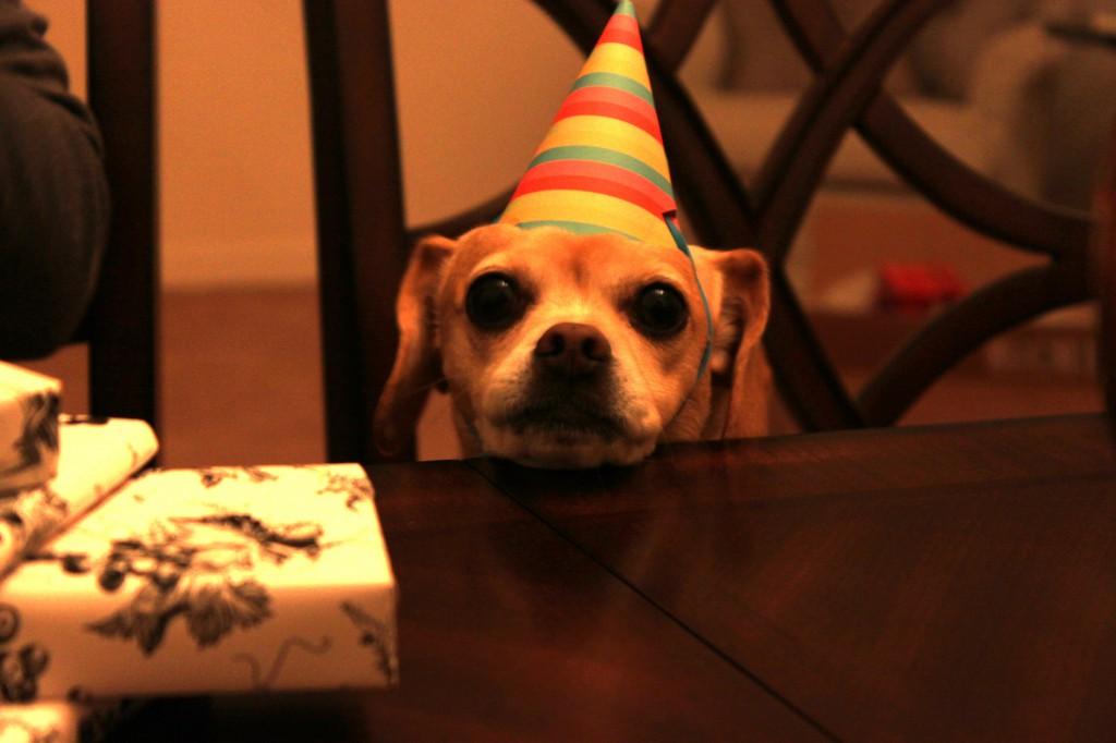 kona-birthday